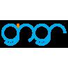gingr