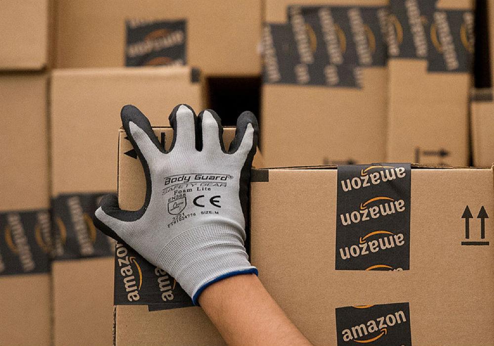 amazon india-flipkart-logistics