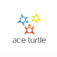 microsoft accelerator Startups- Ace turtle