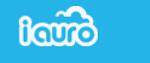 iauro-indian startup funding