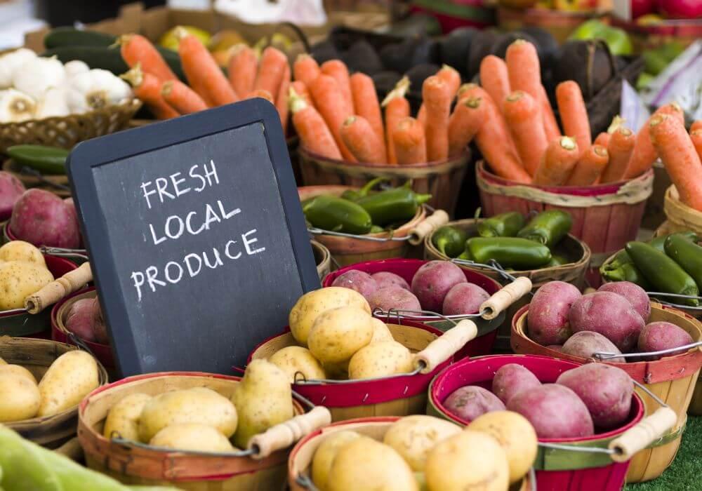 farm taaza-agritech-funding-epsilon
