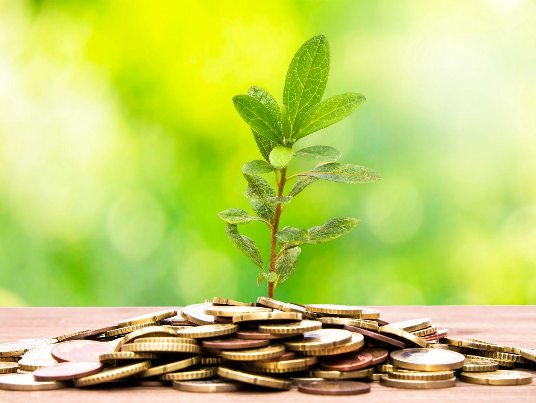Bira, LendingKart Investor Anicut Capital, Gets SEBI Nod For Second Fund