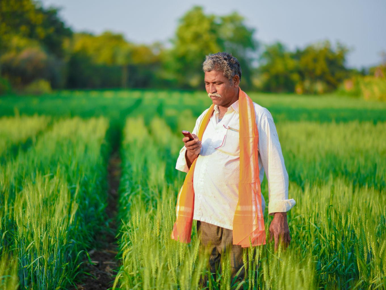 Govt Launches Vernacular Agro Advisory App Meghdoot For Farmers