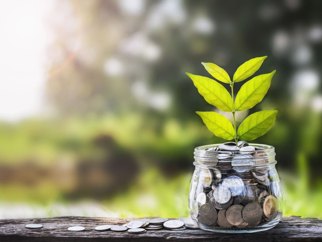 Chiratae Ventures To Launch Seed Fund Of $35 Mn