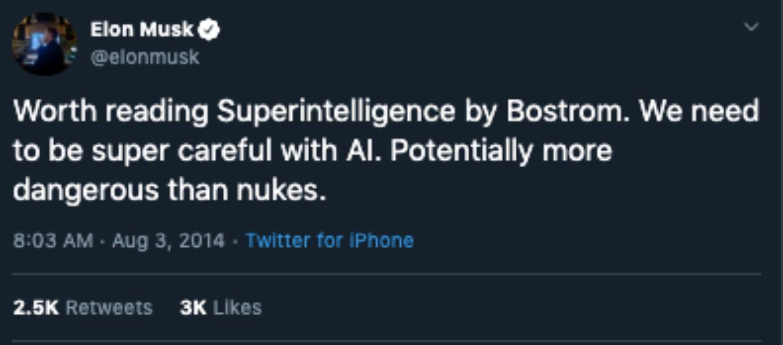elon Musk on ai
