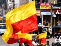 Karnataka flag amazon bikini controversy