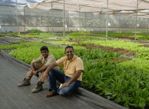 Fruits And Vegetables D2C Brand Gourmet Garden Raises INR 25 Cr